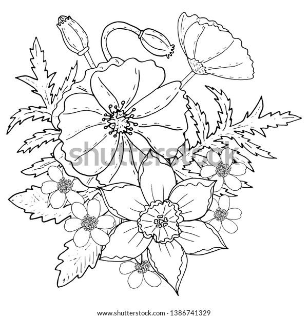 image regarding Poppy Printable named Floral Template Poppy Narcissus Printable Coloring Inventory