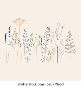 Floral vector background with hand drawn  wild flowers, herbs and grasses.Thin delicate lines silhouettes of  shepherds purse, lavender and other plants in pastel colors on beige background