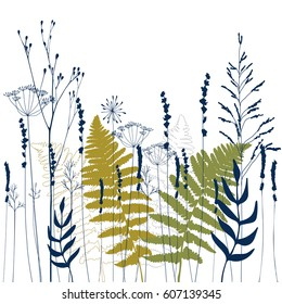 Floral vector background with hand drawn lavender, fennel  flowers, wild herbs and grasses and fern leaves .Thin delicate lines silhouettes  in  blue and green  on white background