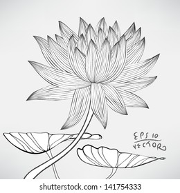 Floral Water Lily Elements for design, EPS10 Vector background