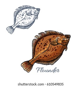 Flounder fish isolated sketch. Brown flatfish or sand flounder fish with dark spots. Predatory marine animal for seafood market label or fishing sport symbol design.
