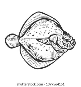 Flounder flatfish plaice fish animal sketch engraving vector illustration. Scratch board style imitation. Black and white hand drawn image.