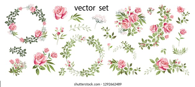 Flower arrangements of pink roses, colorful leaves, wild herbs. Set: roses, bouquets, twigs, wreaths, floral elements. Vector illustration.
