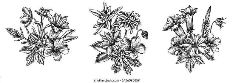 Flower bouquet of black and white edelweiss, meadow geranium, gentiana
