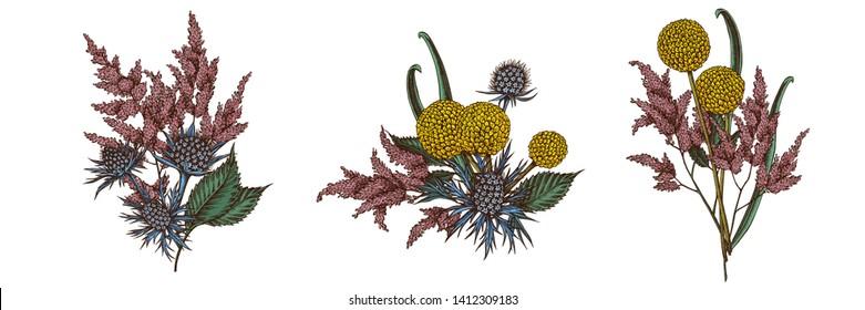 Flower bouquet of colored astilbe, craspedia, blue eryngo