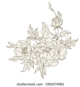 Flower composition from beautiful peonies. Vintage design for greeting cards. Vector illustration