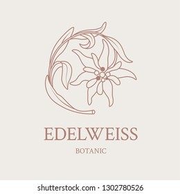 Flower design of the logo with a hand-drawn flower of Edelweiss