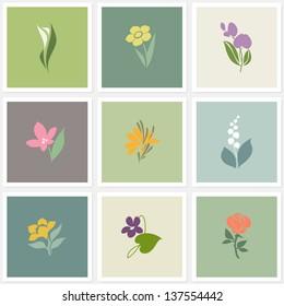 Flower. Elements for design