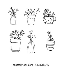 Flower in a flowerpot, flower pot. Saplings. home greenhouse. Bio plants. save the planet with flowers. Coloring book for children and adults. For design, textiles, sweatshirts. Stock hand graphics.