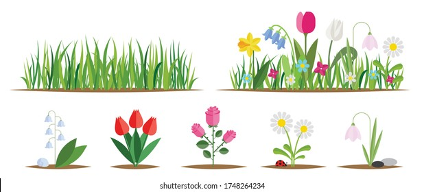 Flower and grass flat icon set isolated on white. Various garden flowers including rose, tulip, orchid, Espatifilo, bells flowers, Bellis perennis, bulb flowers.