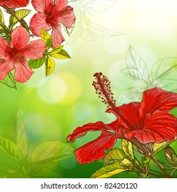 Flower Hibiscus on green background. Eps10