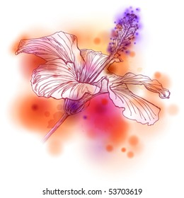 Flower Hibiscus on watercolor background. Eps10