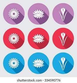 Flower icon set. Camomile, daisy, lily, water-lily, crocus, saffron. Floral symbol. White sign on round red, blue, violet flat buttons with long shadow light gray background. Vector isolated.