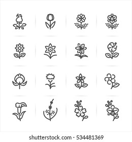 Flower icons with White Background