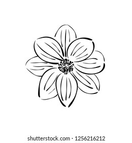 Flower. Ink drawing. Vector.