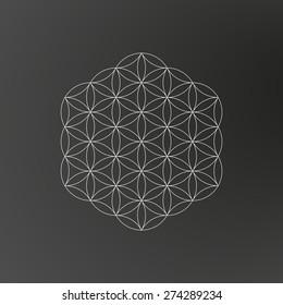 Flower of life, geometric, geometrical shape, line art design, vector illustration EPS 10