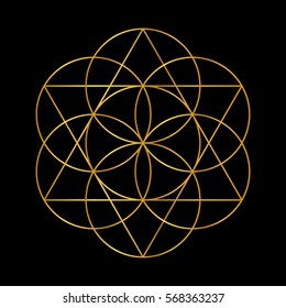 Flower of Life. Golden Vector Sacred Geometry isolated on black.