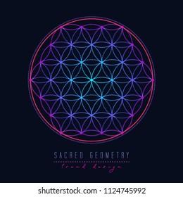 Flower of life. Sacred geometry, vector spiritual symbol. Blue and pink neon vector illustration on black backround.