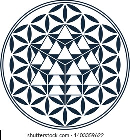 Flower of Life Sacred Geometry Vector Equilibrium 64 Star Tetrahedron Grid