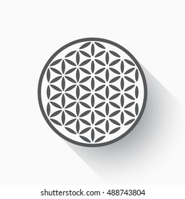Flower of life vector, flat design