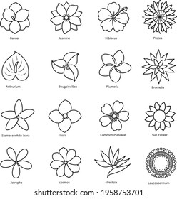 flower line icon isolated on white background vector illustration.