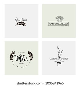 Flower logo templates made in vector. Minimalistic logo design. Wreaths and leaves