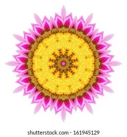 Flower mandala of geometric shapes. Vector colorful mosaic.