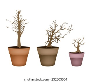 Flower and Plant, Illustration of Tree Brown Color of Landscaping Symbols or Isometric Trees and Plants in Terracotta Flower Pots for Garden Decoration