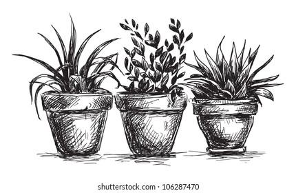 181 & Flower Pot Drawing Images Stock Photos \u0026 Vectors | Shutterstock
