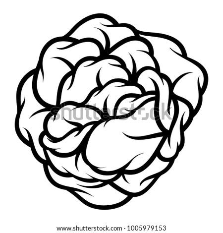 Flower Rose Black White Isolated On Stockvector Rechtenvrij