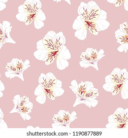 Flower seamless pattern with beautiful white alstroemeria lily flowers on pink background template. Vector set of blooming floral for wedding invitations and greeting card design.