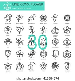 Flower , Thin Line and Pixel Perfect Icons