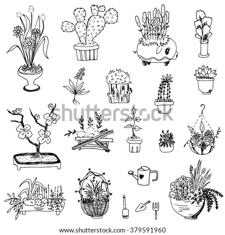 Flower Vase Drawing Free Hand Vector Stock Vector Royalty Free