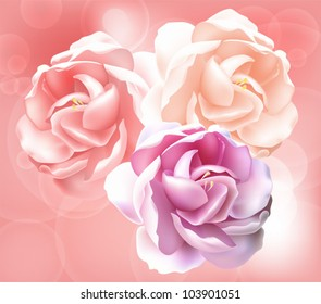 Flower vector background -  pink peony