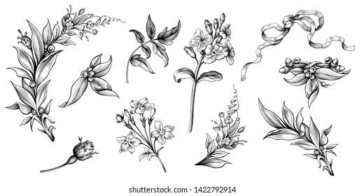 Flower vintage scroll Baroque Victorian frame border rose laurel floral ornament leaf engraved retro pattern decorative design tattoo black and white filigree calligraphic vector