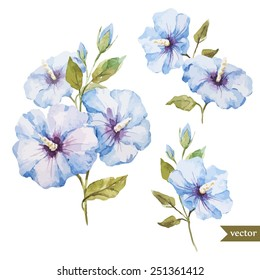 flower, watercolor, hibiscus