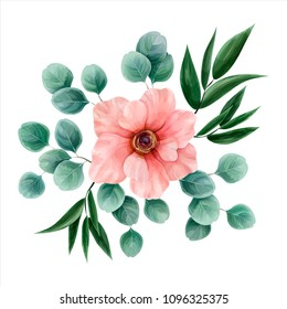 Flower watercolor, vector illustration. Botanical design. Pink anemone surrounded by eucalyptus leaves and italian ruscus. Vector floral composition