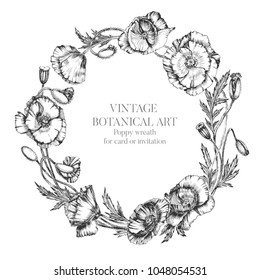 Flower wreath of poppy flowers, buds and leaves. Botanical hand drawn realistic illustration with indian ink. For artwork, invitation, card in vintage style