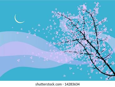 flowering branch in the night