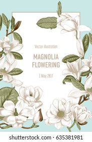 Flowering of the tree magnolia. Magnolia.Vector illustration in vintage style. Greeting card with flowers. Botany.