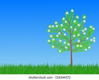 flowering tree on the meadow