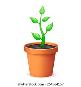 The flowerpot and growing plant on the white background