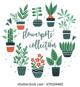 Flowerpots collection. Set of cute Flowers in vases. Vector collection. House plants.