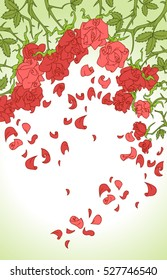 Flowers background. Hello spring and summer. Red roses, thorns, leaves and petals. Flower set. Vector illustrations