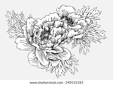 Flowers Black White Line Drawing Vector Stock Vector Royalty Free