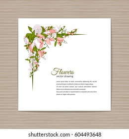 Flowers bouquet - Summer background with Sweet pea (Lathyrus odoratus). Hand drawn vector illustration.