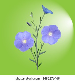 The flowers and buds of flax from the stem and leaves on green background illuminated, single, icon, vector