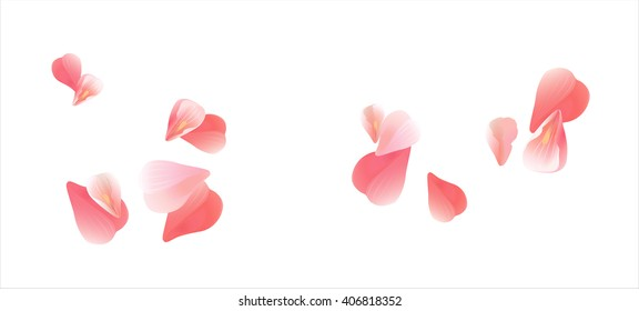 Flowers design. Flowers petals. Sakura flying petals isolated on white background. Petals Roses Flowers. Vector