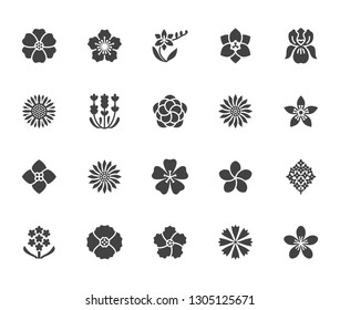 Flowers flat glyph icons. Beautiful garden plants - sunflower, poppy, cherry flower, lavender, gerbera, plumeria, hydrangea blossom. Signs for floral store. Solid silhouette pixel perfect 64x64.