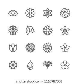 Flowers flat line icons. Beautiful garden plants - chamomile, sunflower, rose flower, lotus, carnation, dandelion, violet blossom. Thin signs for floral store. Pixel perfect 48x48. Editable Strokes